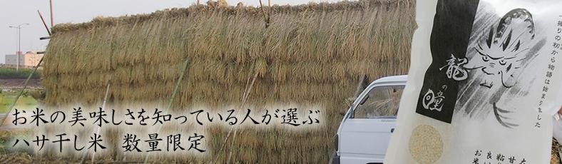 2014年産「龍の瞳」ハサ干し米