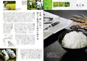 takara-p37-38-prev