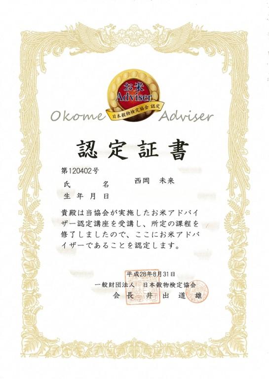 OkomeAdviser